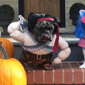 Rambo dog costume